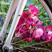 Bespoke Flower Arrangement Poster by Rona Black