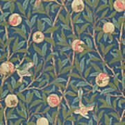 Bird And Pomegranate Poster by William Morris