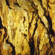 Blanchard Springs Caverns-arkansas Series 04 Poster by David Allen Pierson
