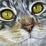 Stunning Cat Painting Poster by Michelle Wrighton