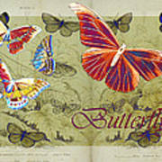 Blue Butterfly - Orange On Green - S02a Poster by Variance Collections