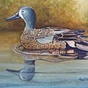 Blue Winged Teal Poster by Rick Huotari