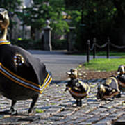 Boston Bruins Ducklings Poster by Juergen Roth