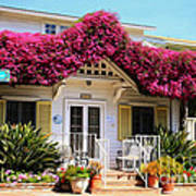 Bougainvillea House Poster by Cheryl Young