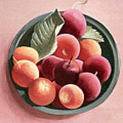 Bowl Of Fruit Poster by Tomar Levine