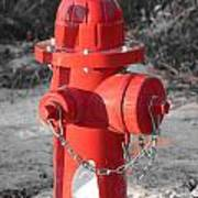 Brand New Red Hydrant On Bw Poster by Jeff at JSJ Photography