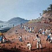 Breaking Up The Land, From Ten Views Poster by William Clark