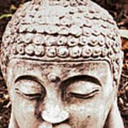 Buddha - Serenity  Poster by Patricia Januszkiewicz