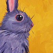 Bunny Poster by Nancy Merkle