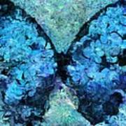 Butterfly Art - D11bl02t1c Poster by Variance Collections