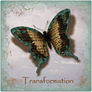 Butterfly Of Transformation Poster by Bobbee Rickard