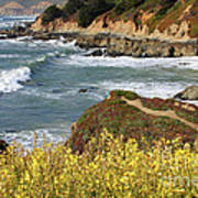 California Coast Overlook Poster by Carol Groenen