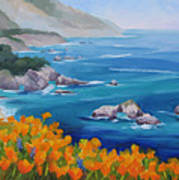 California Poppies Big Sur Poster by Karin  Leonard