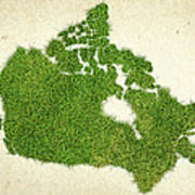 Canada Grass Map Poster by Aged Pixel