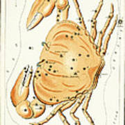 Cancer Constellation - 1825 Poster by Daniel Hagerman