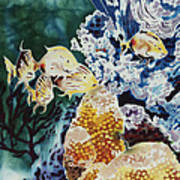 Carribean Currents Poster Poster by Dona Desjardins