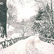 Central Park Winter Landscape Poster by Vivienne Gucwa