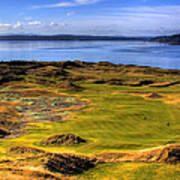 Chambers Bay Golf Course II Poster by David Patterson