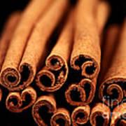 Cinnamon Sticks Poster by John Rizzuto
