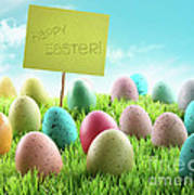 Colorful Easter Eggs With Sign In A Field Poster by Sandra Cunningham