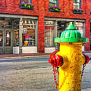 Colorful Fire Hydrant On The Streets Of Asheville Poster by Mark E Tisdale