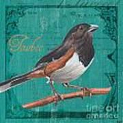 Colorful Songbirds 3 Poster by Debbie DeWitt