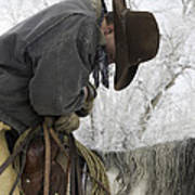 Cowboy Sleeps In The Saddle Poster by Carol Walker