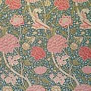 Cray Poster by William Morris