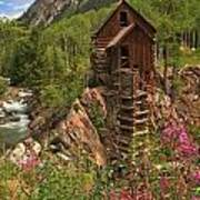 Crystal Mill Wildflowers Poster by Adam Jewell