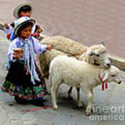 Cuenca Kids 233 Poster by Al Bourassa