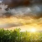 Dark Skies Looming Over Corn Fields  Poster by Sandra Cunningham