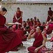 Debating Monks - Sera Monastery Lhasa Poster by Craig Lovell