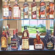 Del Coronado Spirits Poster by Mary Helmreich