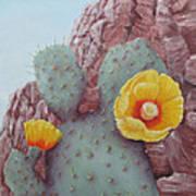 Desert Rose Poster by Roseann Gilmore