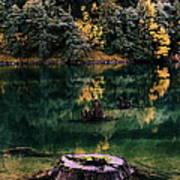 Diablo Lake Tree Stump Poster by Benjamin Yeager