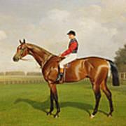 Diamond Jubilee Winner Of The 1900 Derby Poster by Emil Adam
