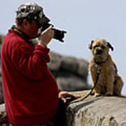 Dog Being Photographed Poster by Terri Waters