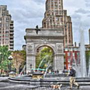Dog Walking At Washington Square Park Poster by Randy Aveille