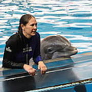 Dolphin Show - National Aquarium In Baltimore Md - 1212230 Poster by DC Photographer