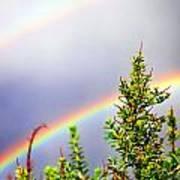 Double Rainbow Sky Poster by Destiny  Storm