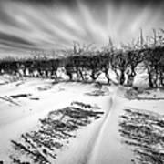 Drifting Snow Poster by John Farnan
