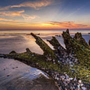 Driftwood On The Beach Poster by Debra and Dave Vanderlaan