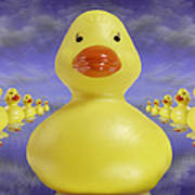 Ducks In A Row 3 Poster by Mike McGlothlen