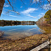 Early Spring On Long Pond Poster by Michelle Wiarda