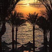 Egypt Sunrise Poster by Jane Rix