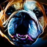 English Bulldog - Electric Poster by Wingsdomain Art and Photography