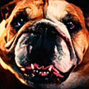 English Bulldog - Painterly Poster by Wingsdomain Art and Photography