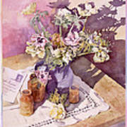 Evening Anemones Poster by Julia Rowntree