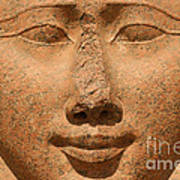 Face Of Hathor Poster by Stephen & Donna O'Meara