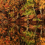 Fall Reflections Poster by Karol Livote